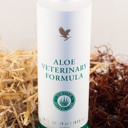 Aloe Veterinary Formula │ For a Healthy Life