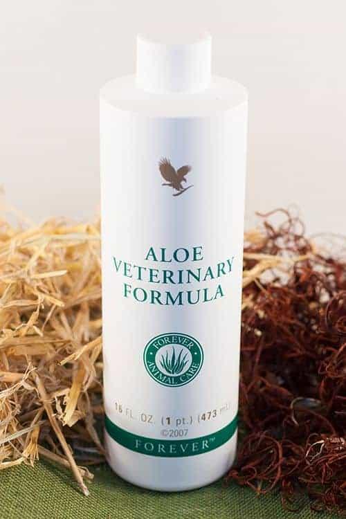 Aloe Veterinary Formula │ For a Healthy Life