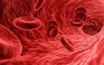 Príbeh Aleny ajej maminky: Aloe Vera na problémy scirkuláciou krvi